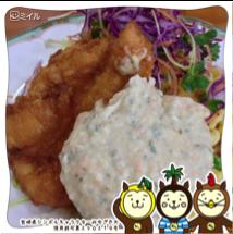 frame_miyazakiken